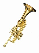 Orchestras and bands often use the same instruments.  A saxophone is used in marching bands and in symphony orchestras.  If you are in an orchestra or band look for items here.